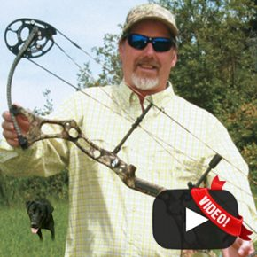 New Breed Archery Bow Report: WebXtra July