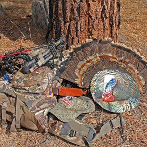 Turkey Hunting: Turkey Bowhunting Tips and Tactics