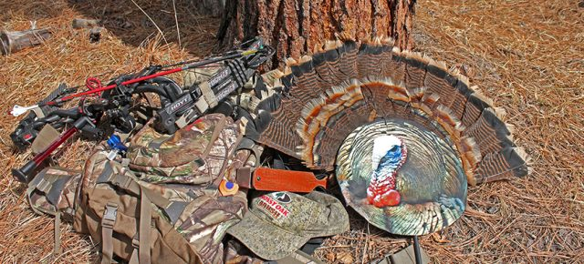 Turkey Hunting: Turkey Bowhunting Tips and Tactics