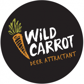 Wild Carrot Scents